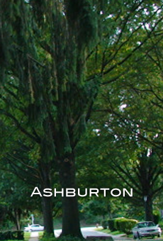 ashburton-poster